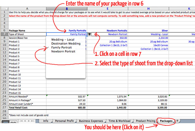 Photographer's Pricing Guide Workbook Screenshot