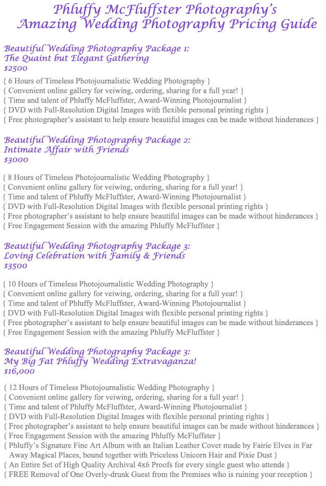 Wedding-Photography-Packages and Prices