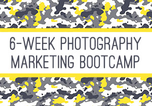 6 Week Photography Marketing Bootcamp from The Modern Tog