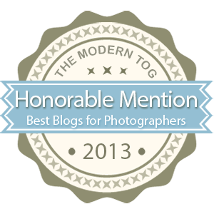 Top 10 Must-Read Blogs for Photographers 2013 from The Modern Tog