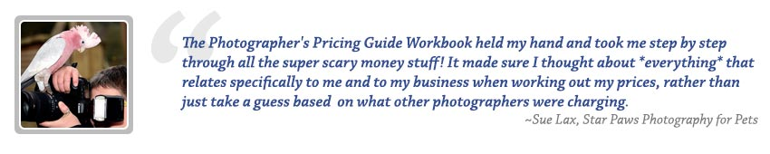 Photography Pricing Guide Review