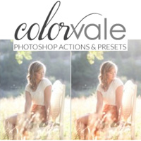 Colorvale-Black-Friday-Sale